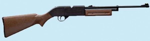 Crosman Pumpmaster 760